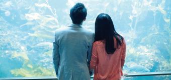 結婚相談所のシステム