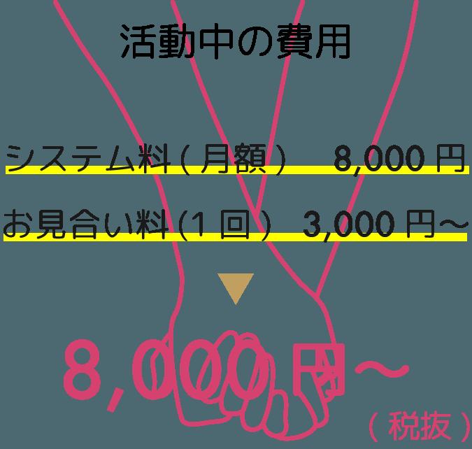 システム利用料月額8千円、お見合い料1回3千円